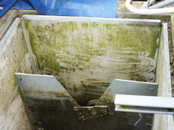 Appledore, Damp Concrete Outlet chamber wall before jet washing